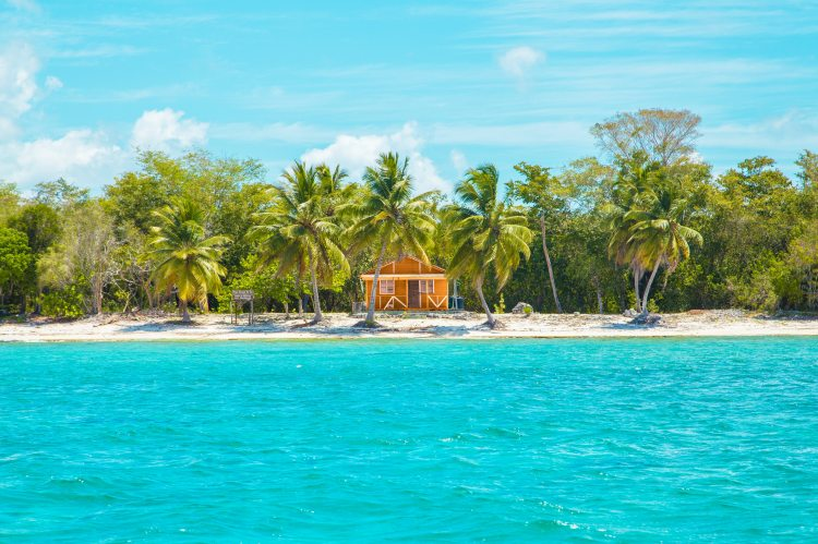 photo-of-wooden-cabin-on-beach-near-coconut-trees-2598683